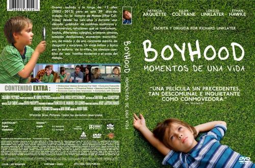 boyhood momentos de una vida dvd